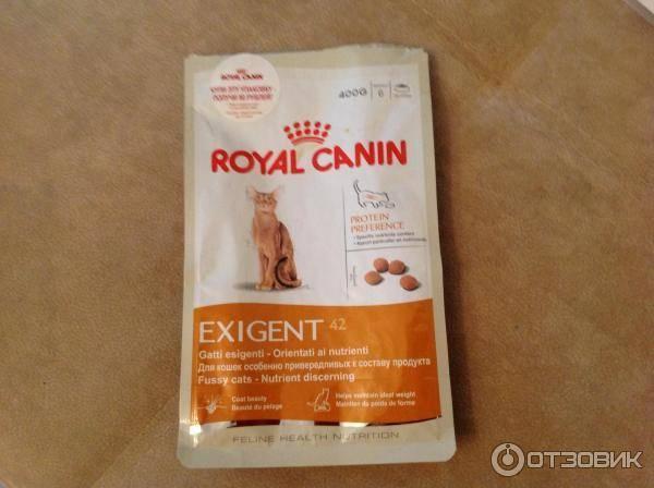 Корм для кошек royal canin: отзывы и обзор состава