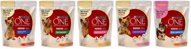 Описание кормов для собак purina: состав, дозировка и отзывы ветеринаров