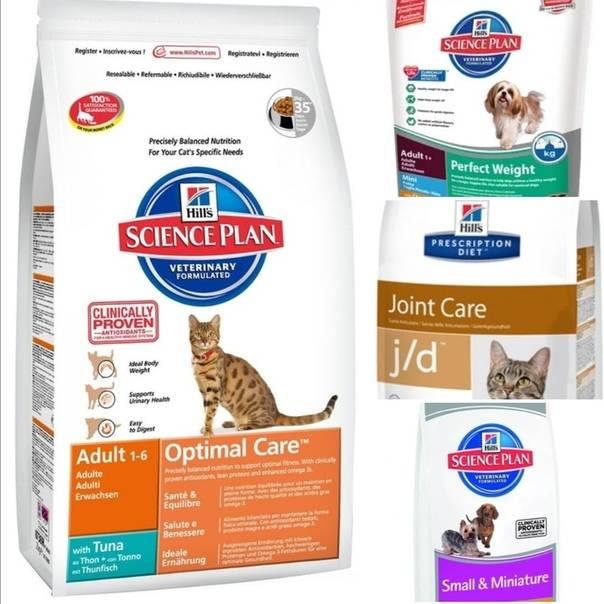 14 лучших влажных кормов для котов и кошек