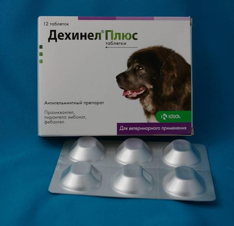 Дехинел плюс таблетки для орального применения 1табл/35кг, 1 таблетка купить, цена и отзывы в зоомагазине beewell