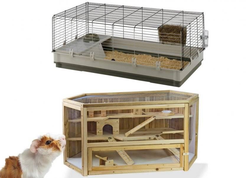 Домик для морской свинки (23 фото): виды и размеры домов. особенности мягких домиков и подвесных домов из дерева