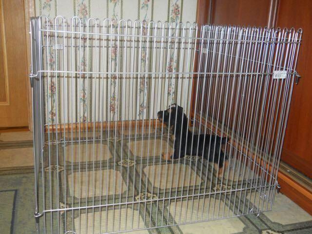 Как сделать квартирный вольер для собачки?