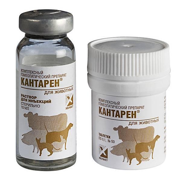 Кантарен собак | препарат для лечения почек и мочевыводящих путей