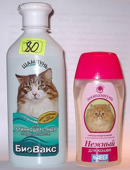 Выбираем шампунь для британских кошек - oozoo.ru