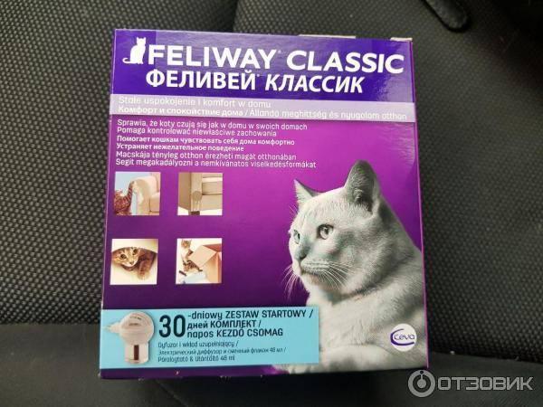 Феливей: феромон для кошек, когда применяется средство, противопоказания и побочные действия, отзывы, стоимость