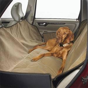 Правила перевозки собак в автомобиле