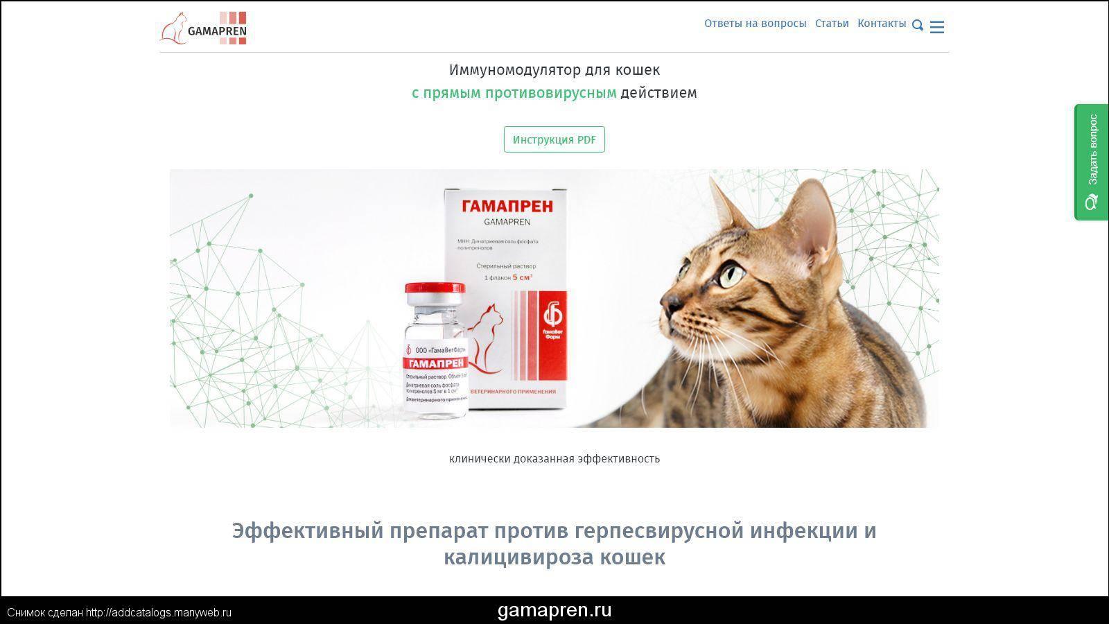 Калицивироз кошек. применение препарата гамапрен