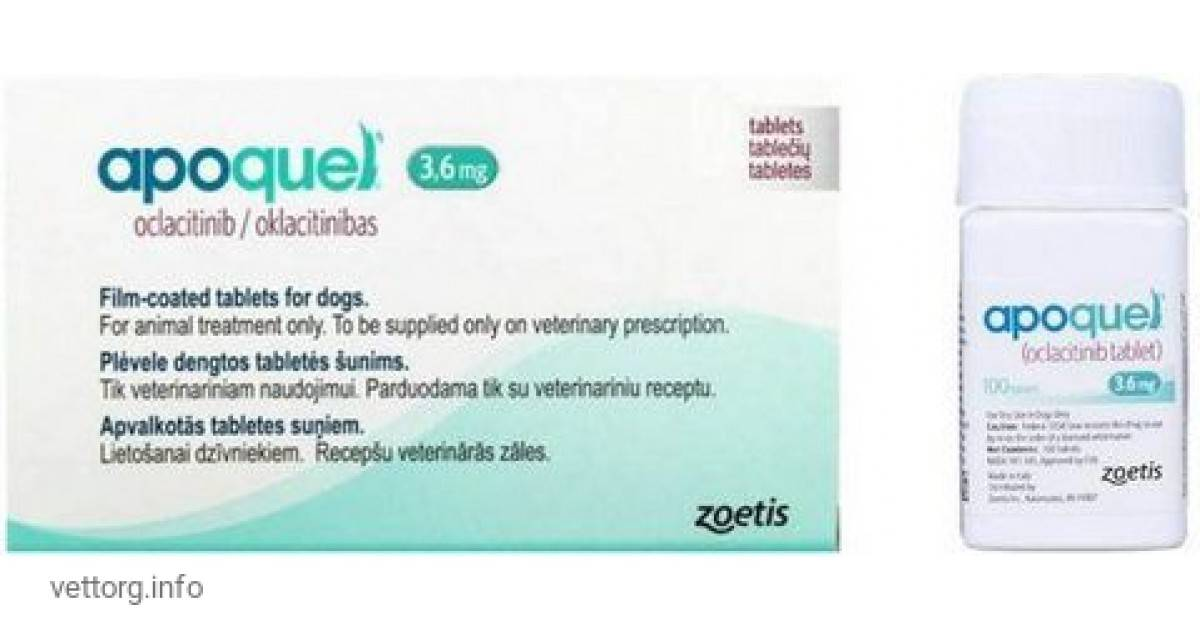 Апоквель для собак: инструкция по применению, назначение и дозировки, эффективность