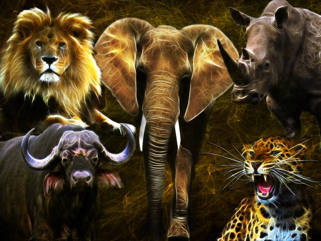 Первое животное, которое увидите на картинке, раскроет суть вашей личности