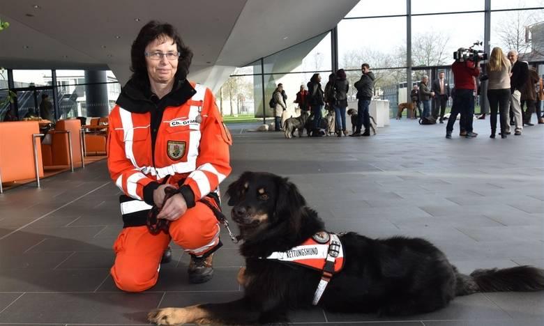 """International dog show cacib – fci / интернациональная выставка собак cacib – fci г. белгород """"белый город-1"""""""