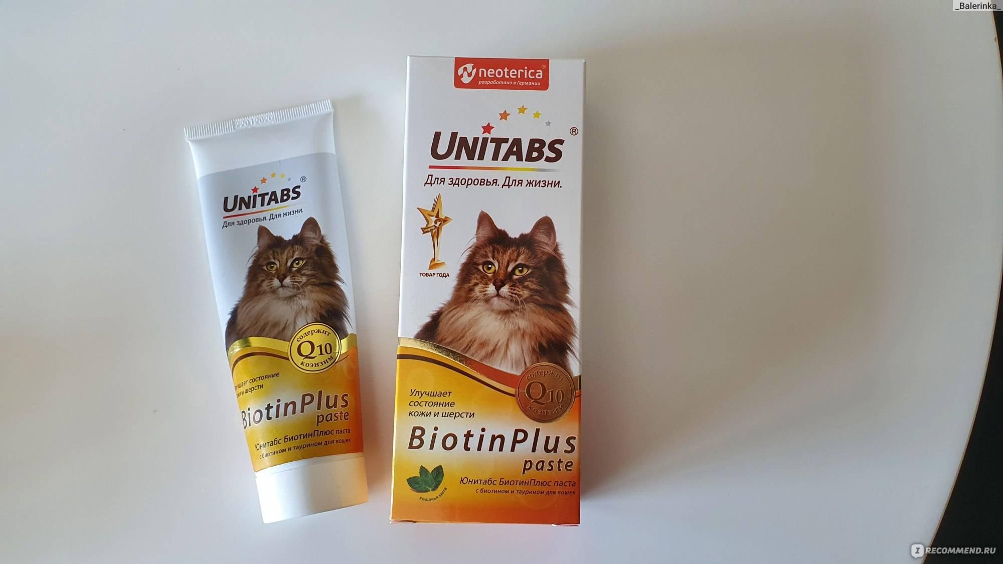 Что такое трихобезоар у кошек и как его лечить