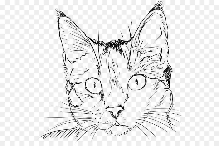 Как нарисовать кота  поэтапно 6 уроков