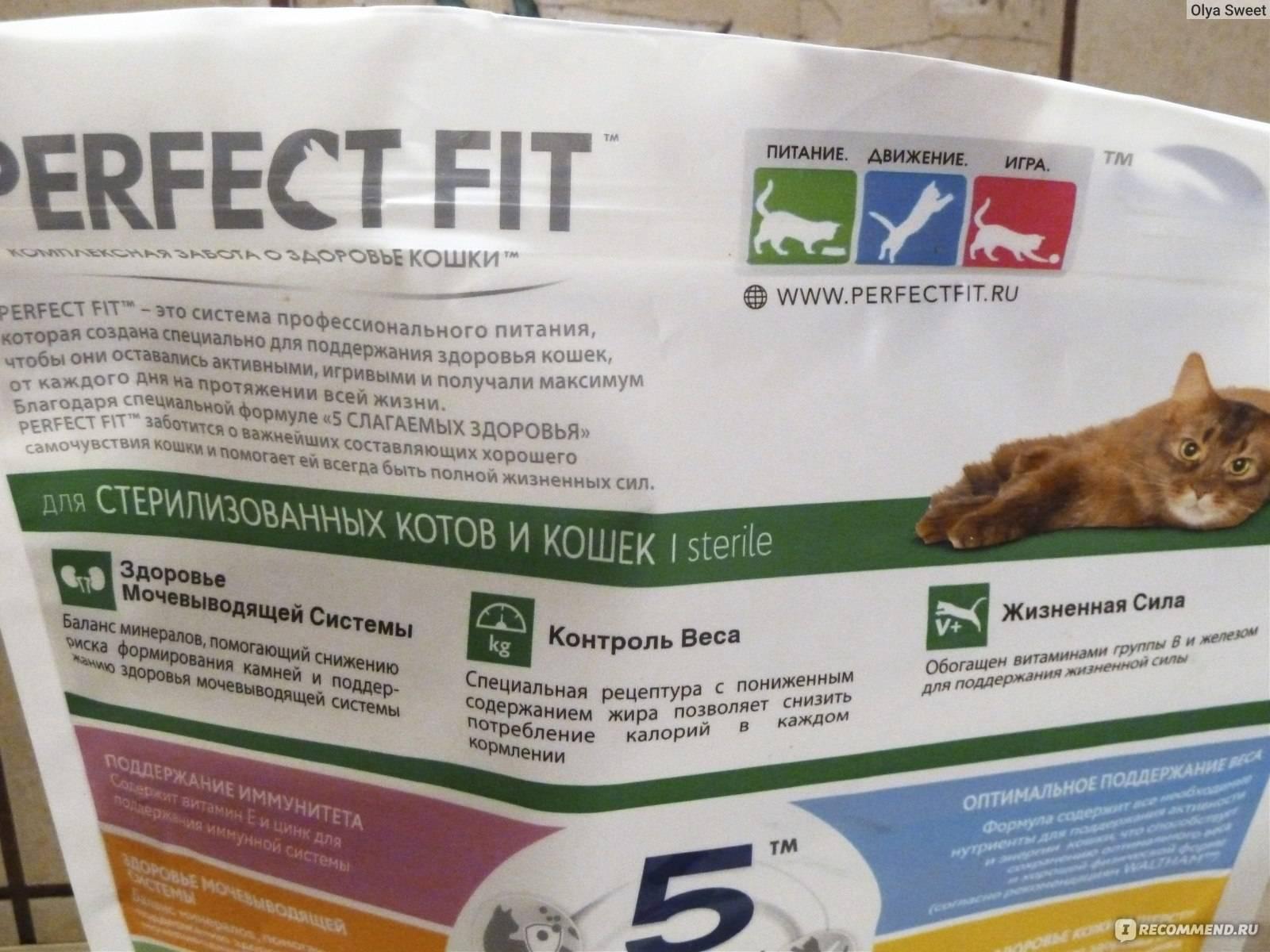 Отзывы о корме felix (феликс) для кошек