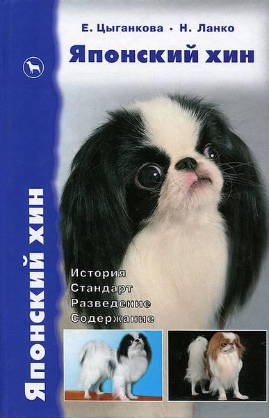 Японский шпиц: описание, стандарт породы, характер и дрессировка собаки, цена щенков, фото