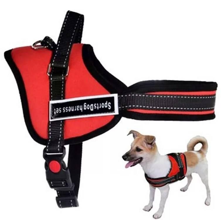 Как одеть намордник на собаку: советы и рекомендации