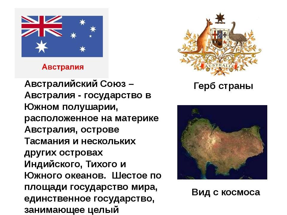 Австралийский мист: история, окрасы, характер и собенности