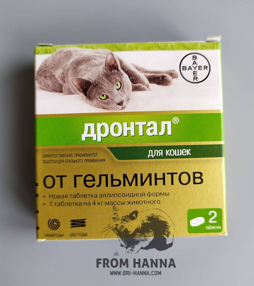 Дронтал для кошек и котят: инструкция по применению, показания и противопоказания, где купить, отзывы, аналоги