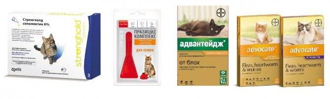 Капли для котят и кошек bayer адвантейдж от блох весом до 4кг, 1 пипетка в упаковке капли, 0.4 мл