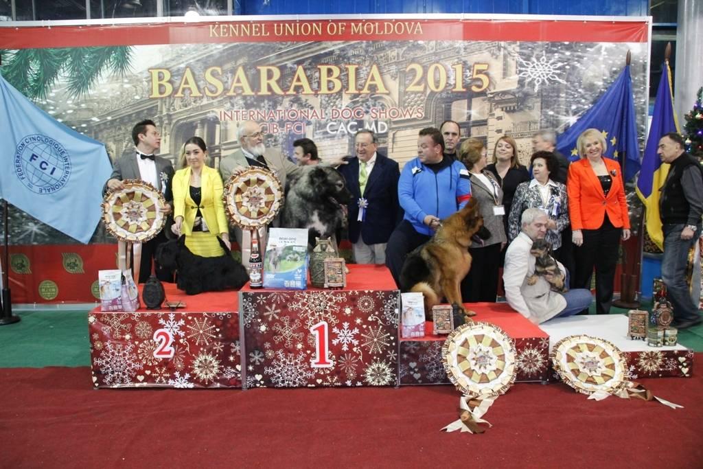 Wds2016 moscow | всемирная выставка собак world dog show 2016 (wds 2016)