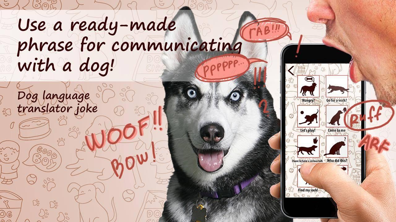 Переводчики лая для собак: понимание языка собак
