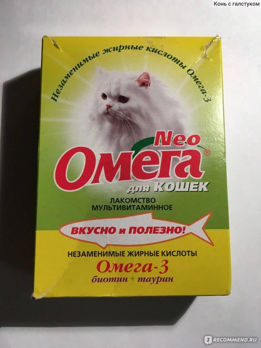 Витамины для кошек: группы, инструкция по применению