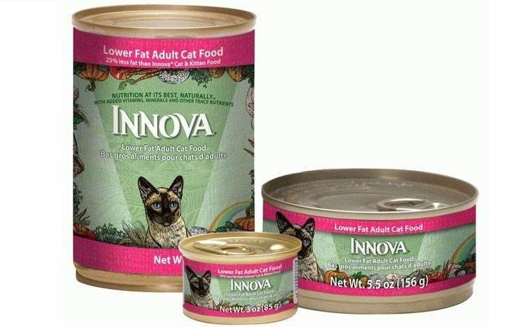 Лучшие корма для кошек: отзывы ветеринаров
