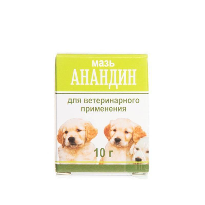 «анандин» для собак: показания, форма выпуска, применение