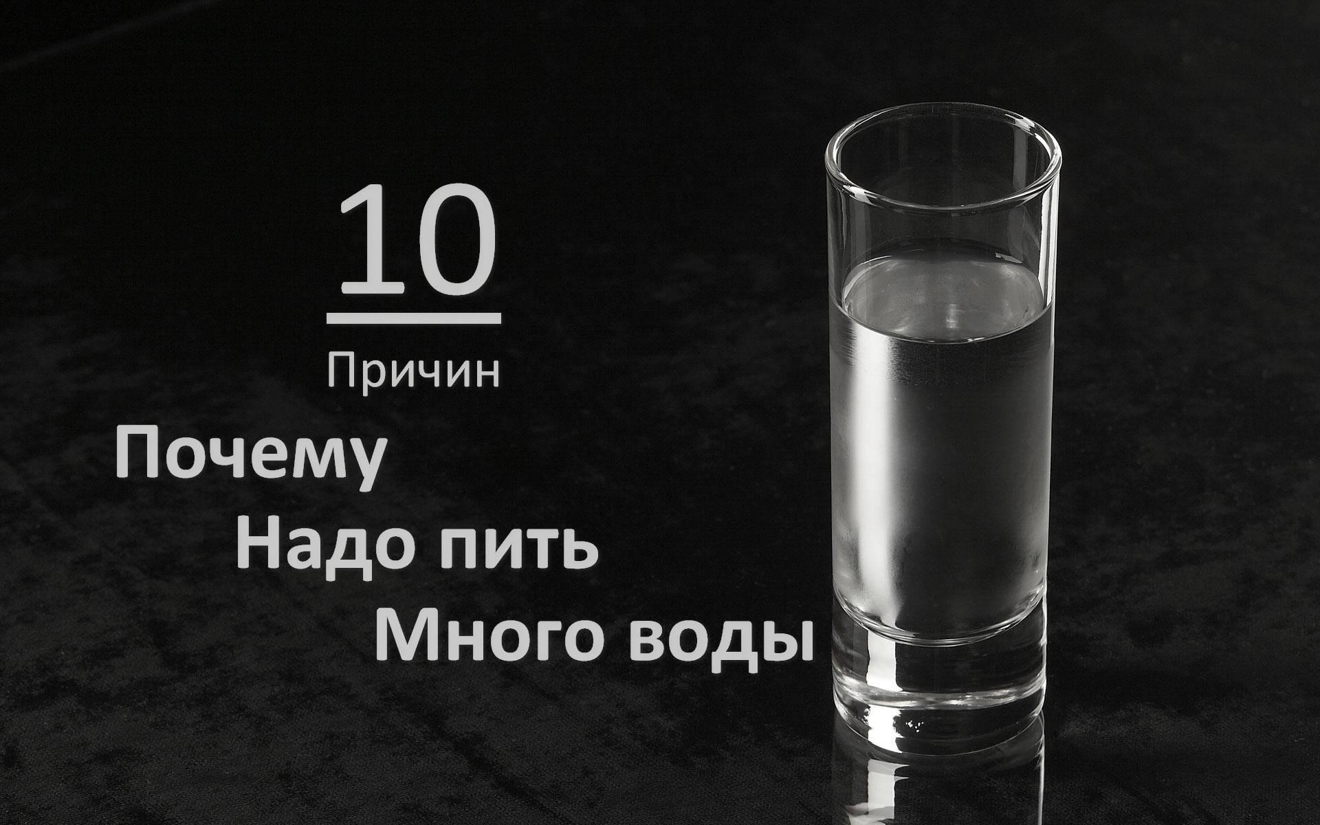 Почему кошка пьет много воды?