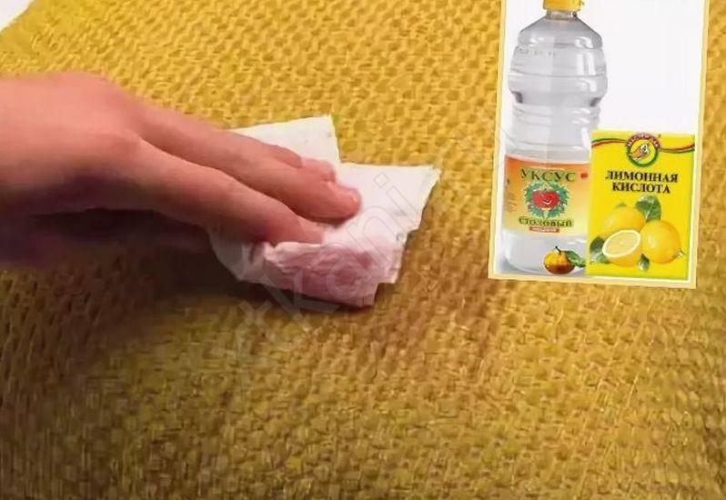 Как избавиться от запаха кота в доме- лучшие рецепты
