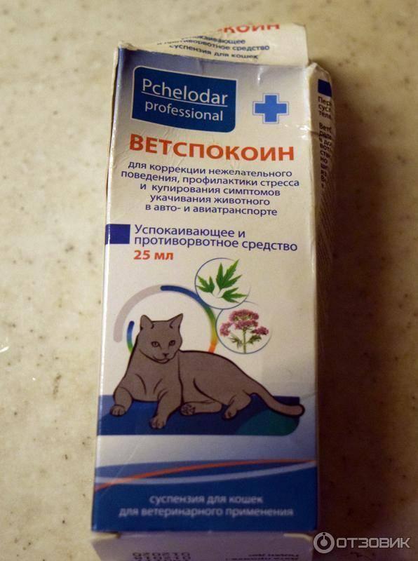 Ветспокоин для собак: инструкция по применению, эффективность, отзывы ветеринаров.