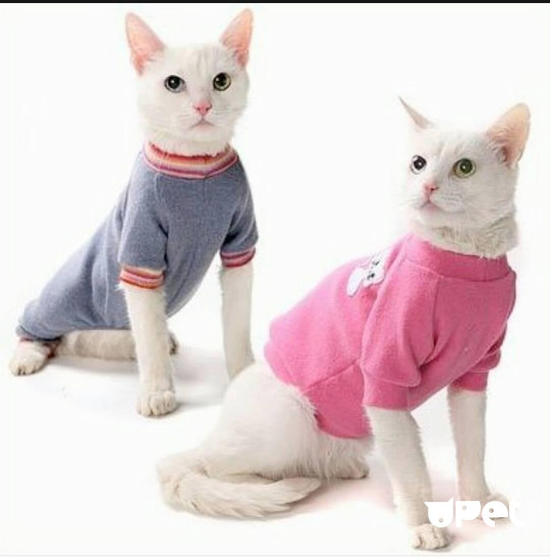 Костюмы для кошек своими руками