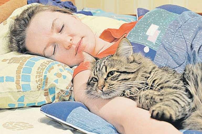 Почему кошки так любят спать с человеком