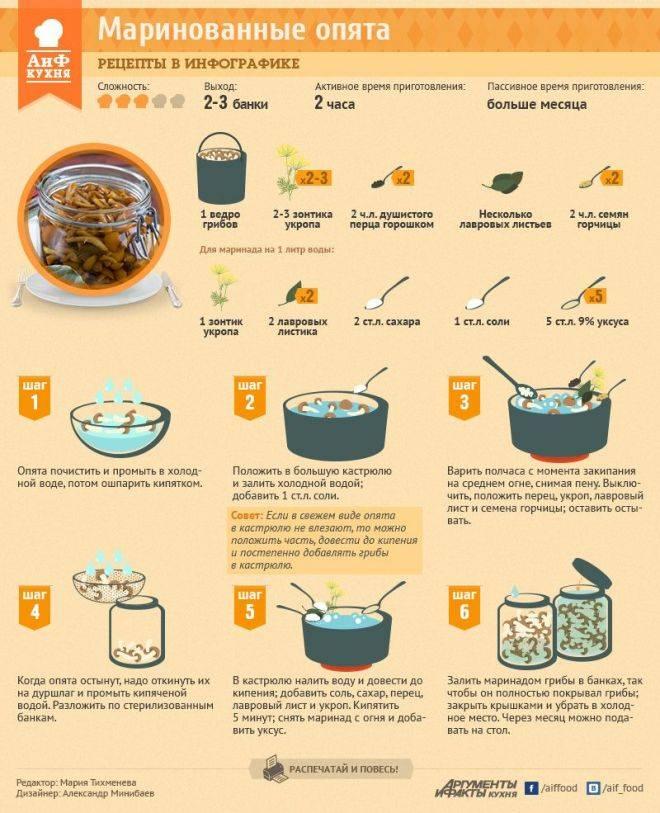 Нужно ли солить еду собакам при готовке: польза и вред соли