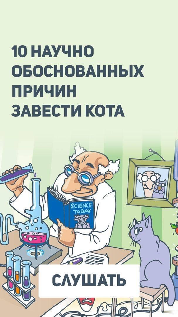 10 научно обоснованных причин завести кота -