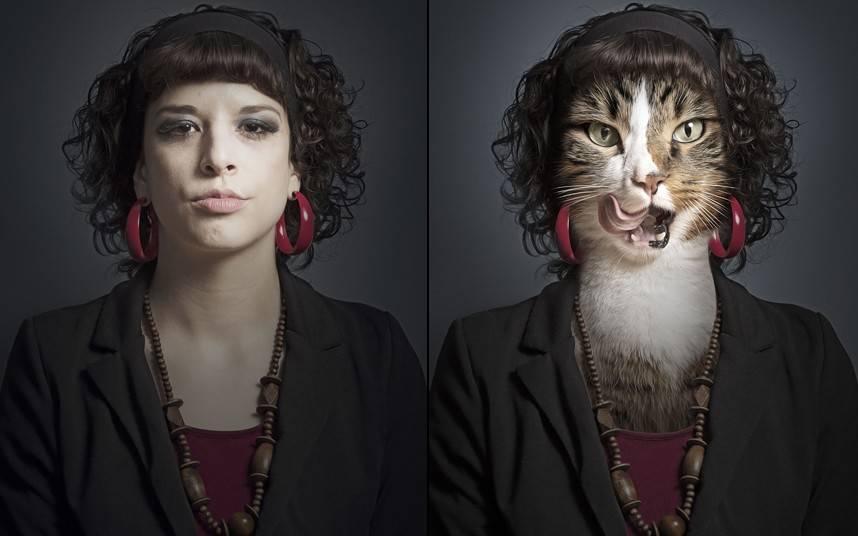 Узнают ли кошки лица людей?