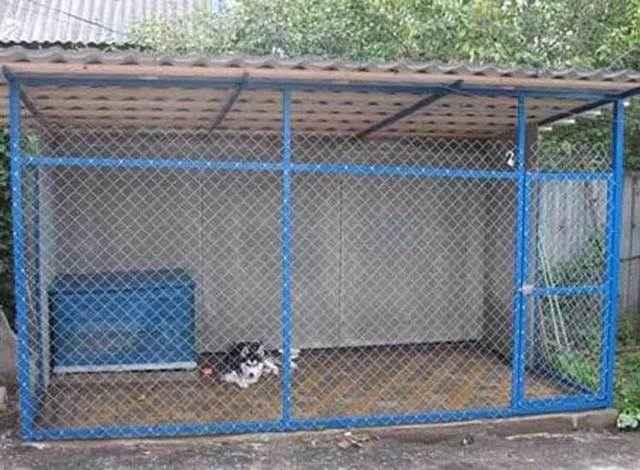 Как самостоятельно построить уютный вольер для собаки?