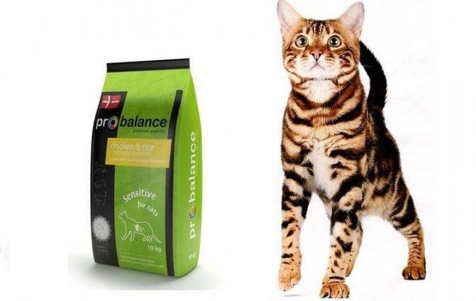 """Корм для кошек """"пробаланс"""": отзывы, рекомендации ветеринаров, состав и виды корма"""