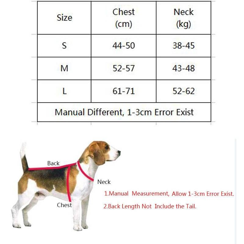 Какие есть виды шлеек для собак и как их правильно выбрать