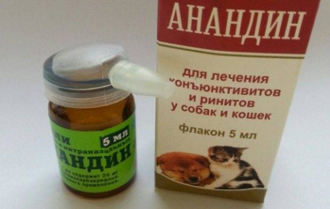 Анандин для кошек и собак: инструкция по применению