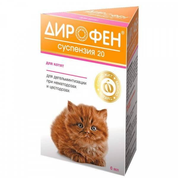 Дирофен суспензия 20 для котят и щенков - купить, цена и аналоги, инструкция по применению, отзывы в интернет ветаптеке добропесик