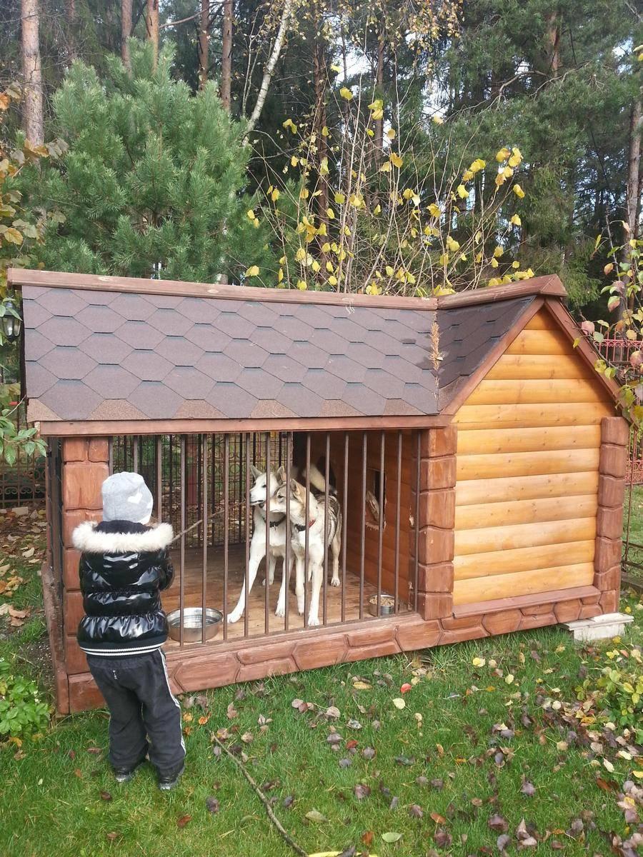 Вольер и будка для алабая (27 фото): как выбрать верный размер вольера и конуры для собаки? требования к вольерам для щенков