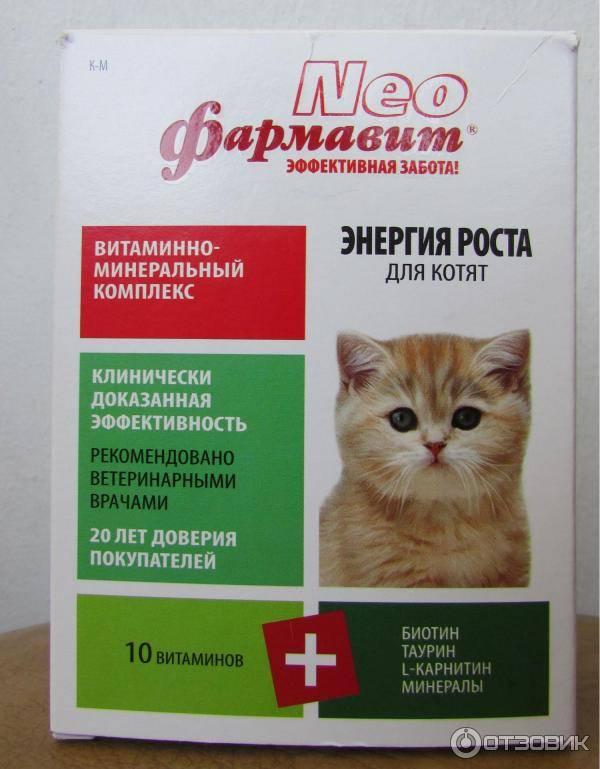 Витамины в помощь животным