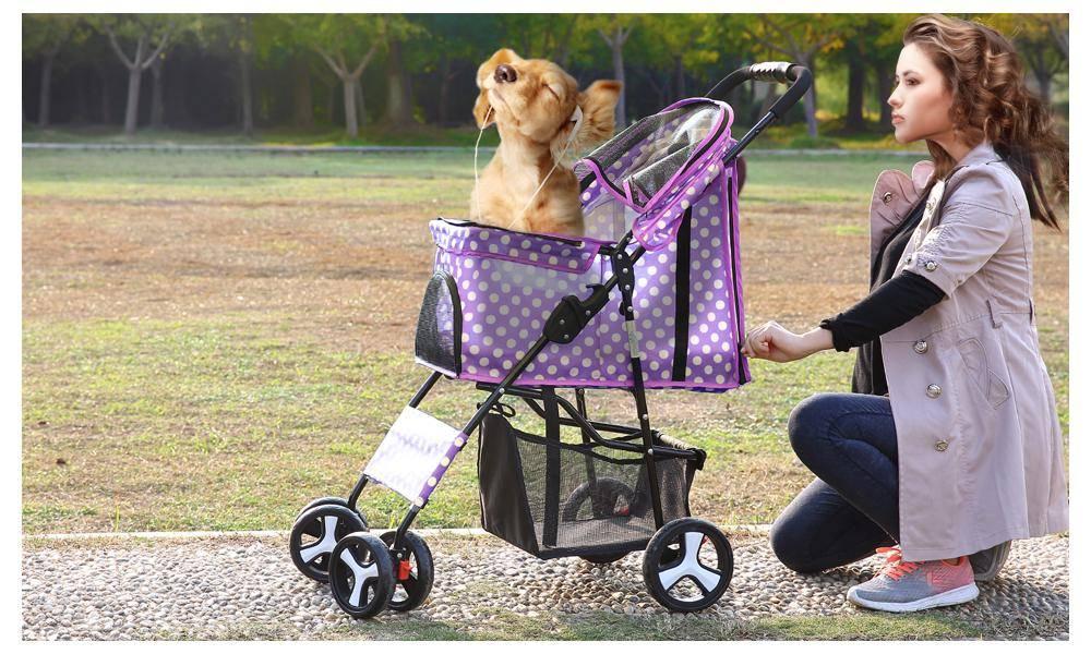 Для чего нужны прогулочные коляски для собак: виды тележек для мелких пород