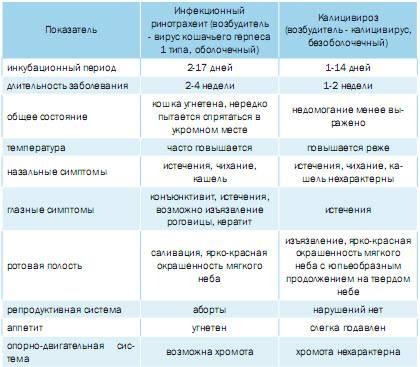 Геморрагическая болезнь кроликов -признаки, симптомы, лечение