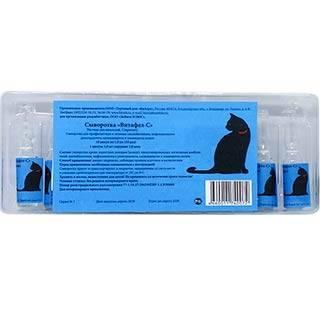 Сыворотка Витафел С для кошек