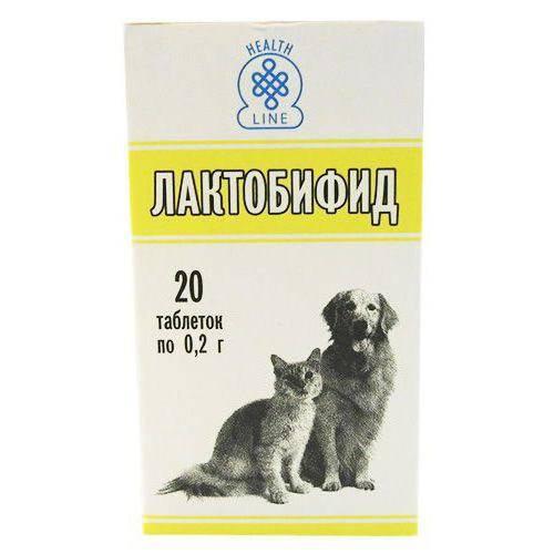 Лактобифид для кошек и собак: инструкция по применению, отзывы, цена