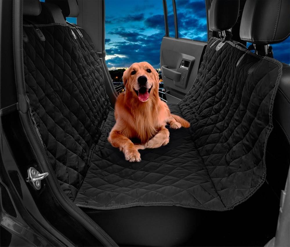 Перевозка собак в машине правила и приспособления