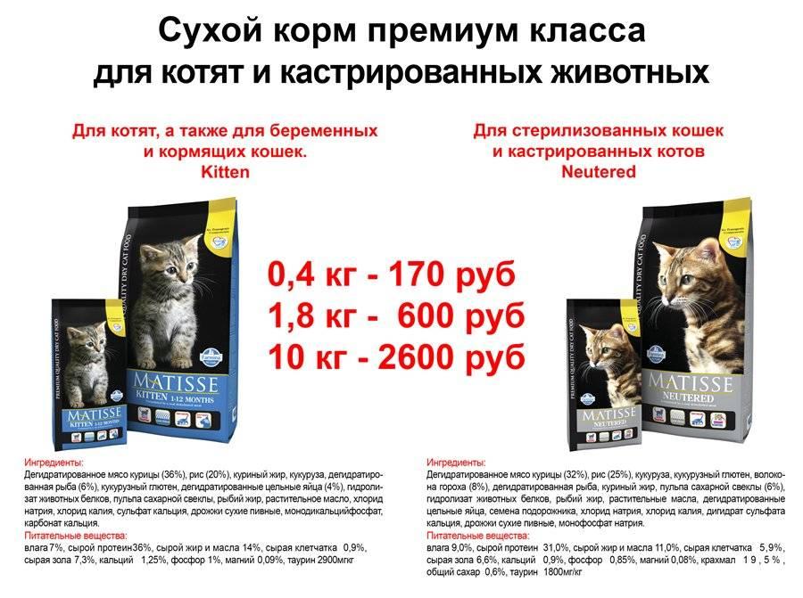 Сравнение кормов для кошек: сравнительная таблица, анализ кошачьих кормов по составу