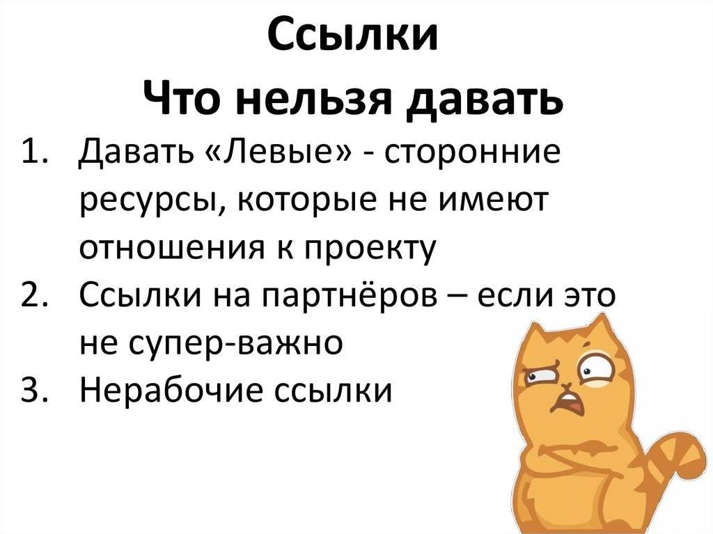 Не делайте так никогда. 7 вещей, которые на самом деле ненавидят кошки