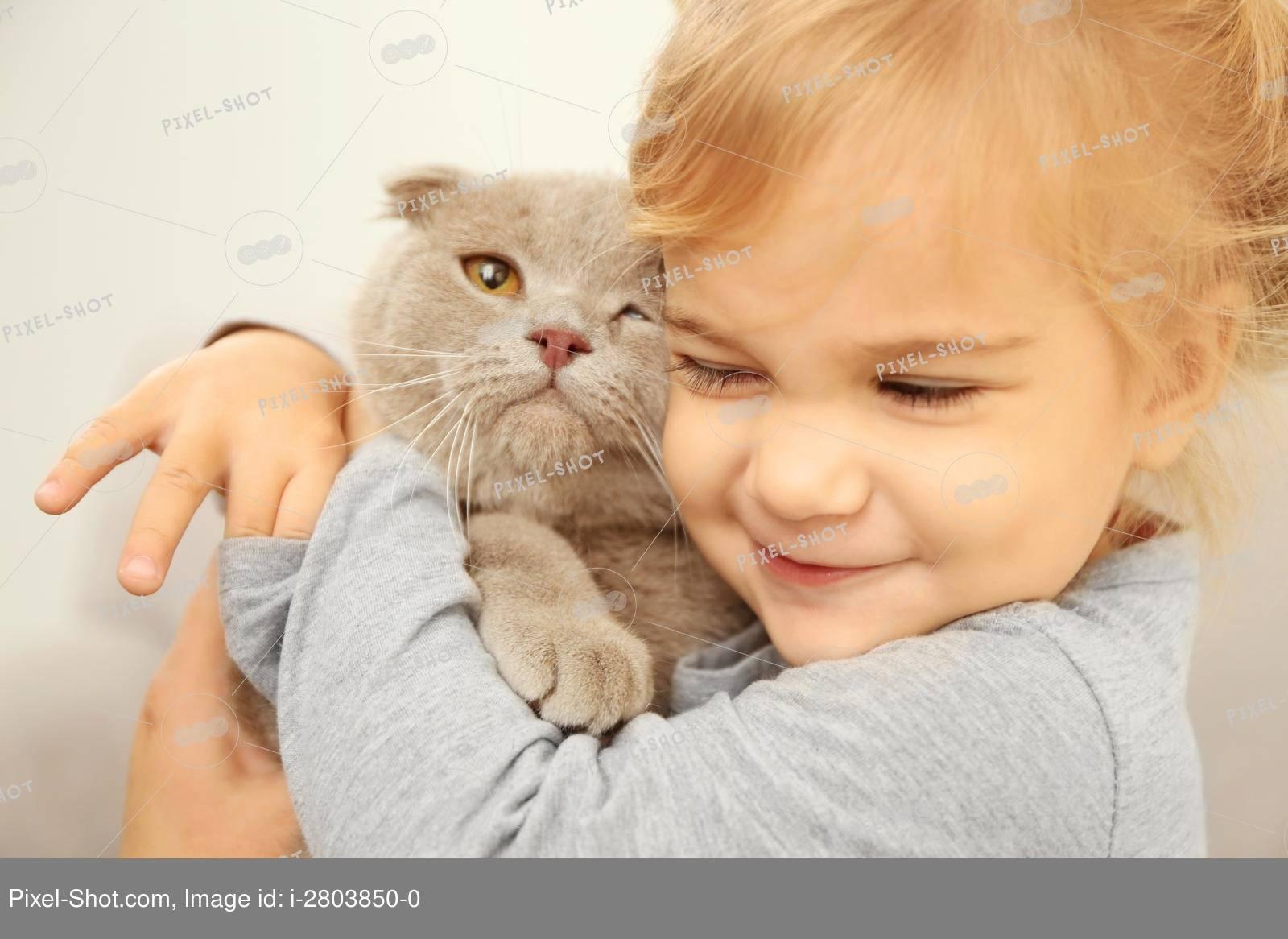 Аллергия на кошек - что делать